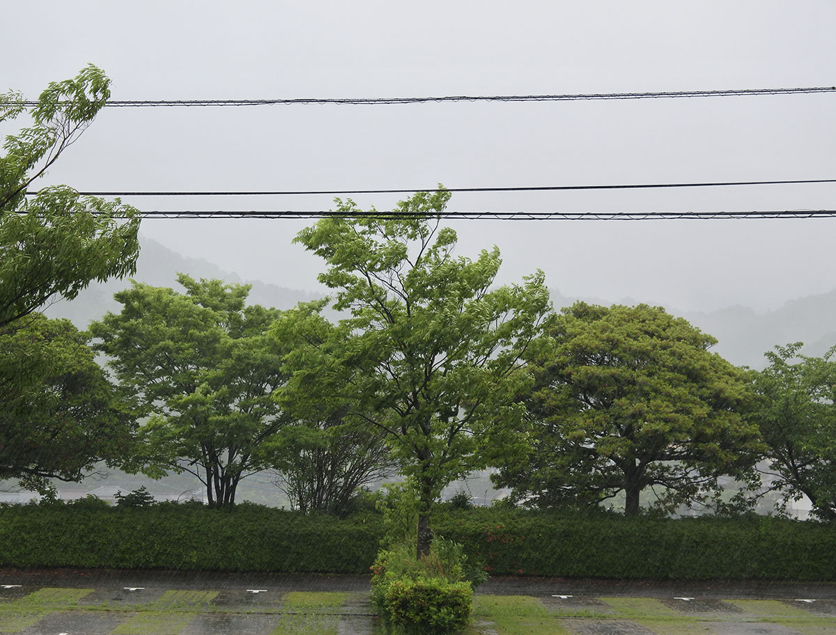 有田町は梅雨入り